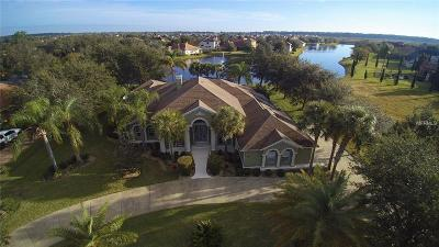 Mount Dora, Mt Dora, Mt. Dora Single Family Home For Sale: 2017 Castelli Boulevard