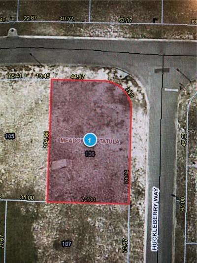 Astatula Residential Lots & Land For Sale: 25140 Alamanda Drive #106