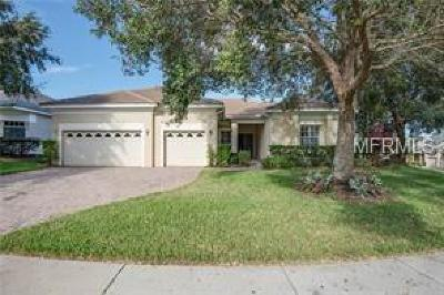 Clermont Single Family Home For Sale: 2865 Highland View Circle