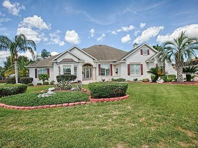 The Villages Single Family Home For Sale: 968 Brantley Street