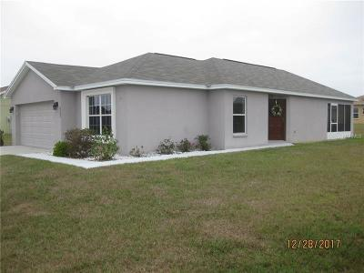 Leesburg Single Family Home For Sale: 5347 Great Egret Drive