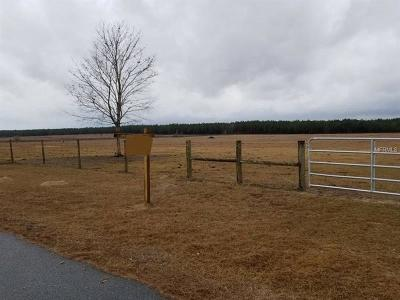 Wildwood Residential Lots & Land For Sale: 21 Acres NW 27 Avenue