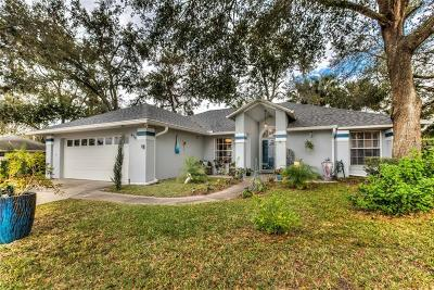 Mount Dora Single Family Home For Sale: 616 Chautauqua Drive