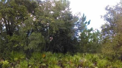 Lake County, Seminole County, Volusia County Residential Lots & Land For Sale: Salyers Road