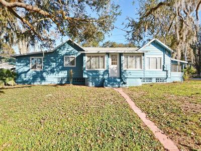 Mount Dora Single Family Home For Sale: 1335 Lakeshore Drive