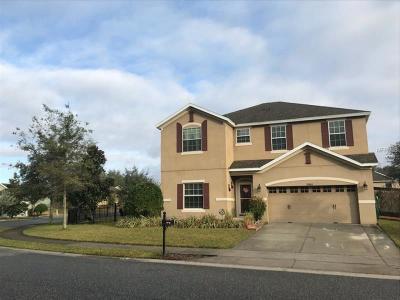 Mount Dora Single Family Home For Sale: 20843 Oldenburg Loop