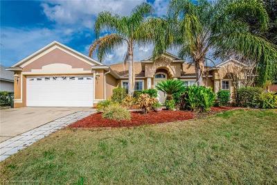 Oakland Single Family Home For Sale: 1117 Johns Cove Lane