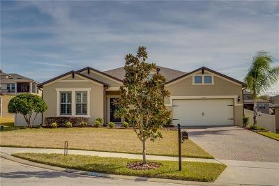 Mount Dora, Mt Dora, Mt. Dora Single Family Home For Sale: 30130 Kladruby Point