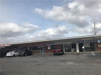 mount dora Commercial For Sale: 2925 W Old Us Highway 441