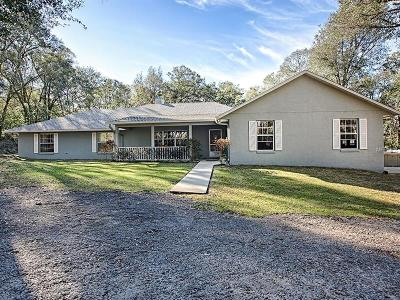 Eustis Single Family Home For Sale: 35011 Marshall Road