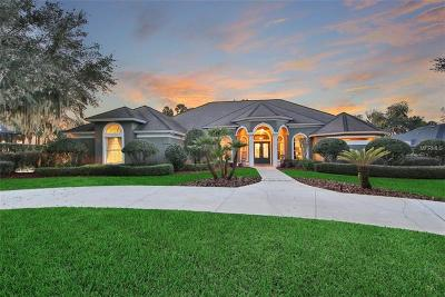 Tavares FL Single Family Home For Sale: $1,148,998