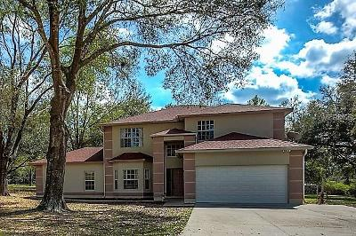 Eustis Single Family Home For Sale: 19830 Lookout Lane