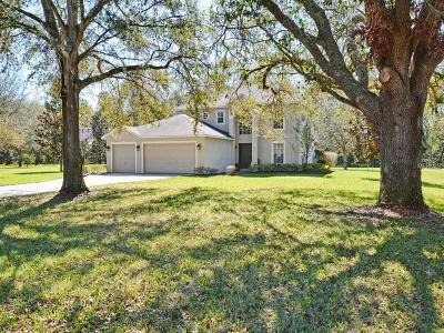 Mount Dora Single Family Home For Sale: 7406 Lake Marni Court