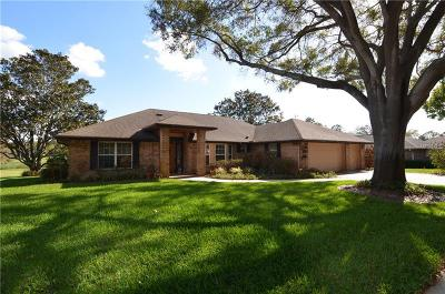 Clermont Single Family Home For Sale: 15013 Green Valley Boulevard