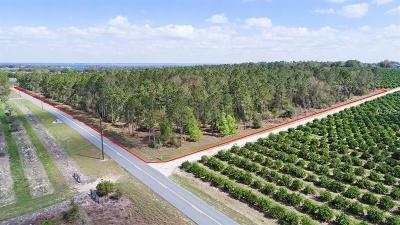 Lake County, Seminole County, Volusia County Residential Lots & Land For Sale: Gospel Hill Road