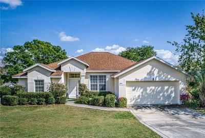 Eustis Single Family Home For Sale: 2991 Westgate Dr