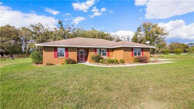 Wildwood Single Family Home For Sale: 8920 County Road 229