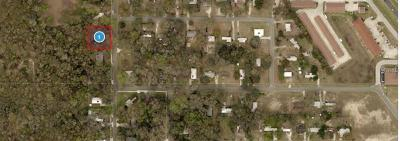 Lake County, Seminole County, Volusia County Residential Lots & Land For Sale: Morningside Street