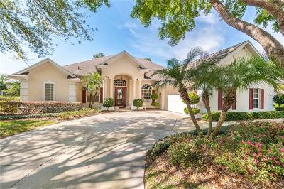 Mount Dora Single Family Home For Sale: 5001 Greenbriar Trail