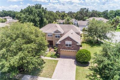 Eustis Single Family Home For Sale: 3776 Blue Crown Lane