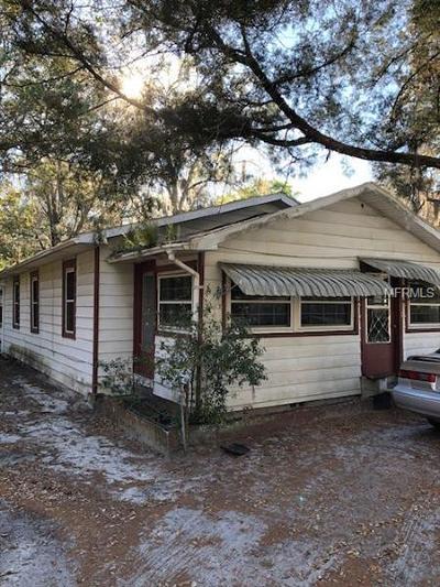 Mount Dora Single Family Home For Sale: 1704 N Orange Street