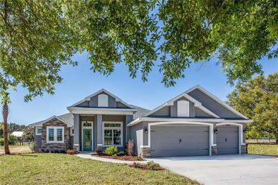 Mount Dora Single Family Home For Sale: 30100 Bretton Loop