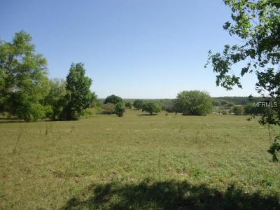 Lake County, Seminole County, Volusia County Residential Lots & Land For Sale: County Road 455