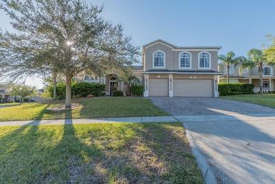 Clermont Single Family Home For Sale: 1100 Callaway Circle