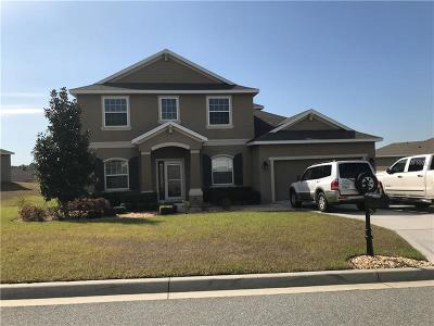 Clermont Single Family Home For Sale: 12537 Hammock Pointe Circle