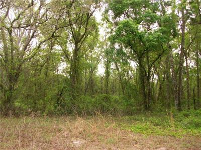 Dade City, San Antonio Residential Lots & Land For Sale: Woodtrace Drive