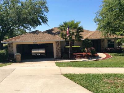 Clermont Single Family Home For Sale: 14631 Green Valley Boulevard