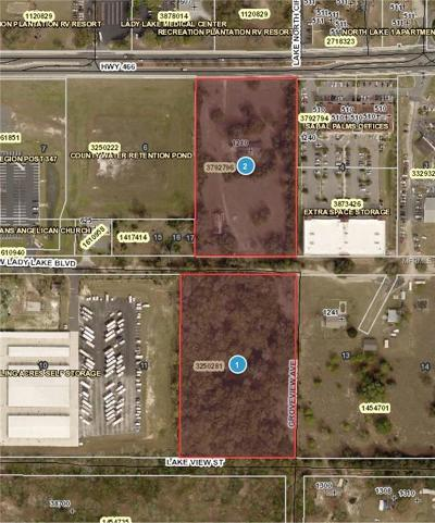 Lake County, Seminole County, Volusia County Residential Lots & Land For Sale: 1210 County Road 466