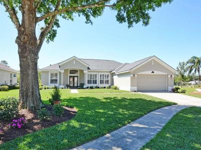 Mount Dora Single Family Home For Sale: 6022 Falconbridge Place
