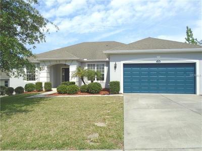 Lake County Single Family Home For Sale: 2718 Eagle Lake Drive