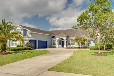 Debary Single Family Home For Sale: 493 N Pine Meadow Drive
