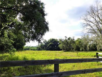 Leesburg Residential Lots & Land For Sale: 298 Sunnyside Drive