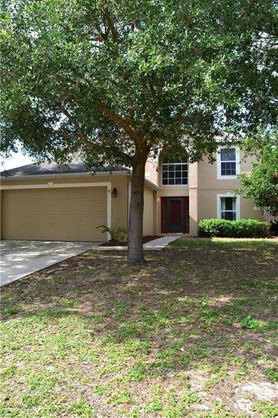 Eustis Single Family Home For Sale: 2322 Sandridge Circle