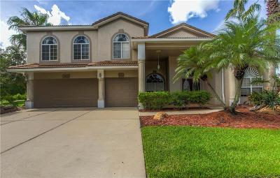 Orlando Single Family Home For Sale: 2503 Wembleycross Way