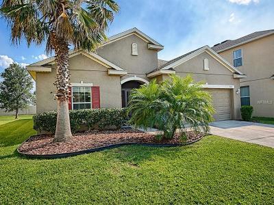 Groveland Single Family Home For Sale: 314 Peacock Springs Court