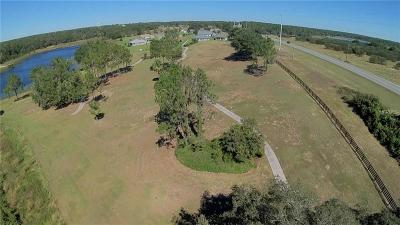 Umatilla Residential Lots & Land For Sale: 41521 State Road 19