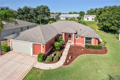 Lake County Single Family Home For Sale: 4837 Sawgrass Lake Circle