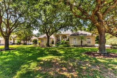 Eustis Single Family Home For Sale: 19038 Park Place Boulevard