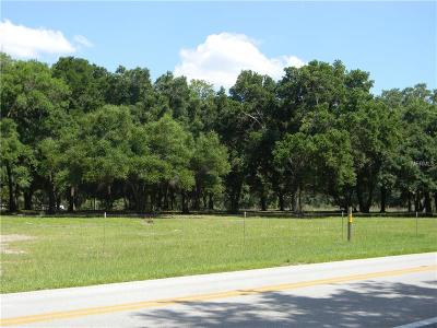 Mount Dora Residential Lots & Land For Sale: 0 Dora Avenue