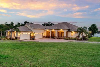 CLERMONT Single Family Home For Sale: 10140 Canal Zone Way