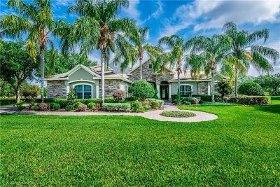 Tavares FL Single Family Home For Sale: $719,900