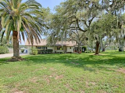 Fruitland Park Single Family Home For Sale: 35929 Lake Unity Nursery Road