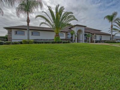 Yalaha Single Family Home For Sale: 7350 Spring Mountain Lane