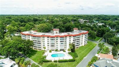 Mount Dora Condo For Sale: 601 N McDonald Street #102