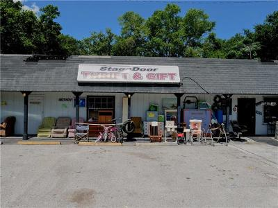 mount dora Commercial For Sale: 21800 Us Highway 441