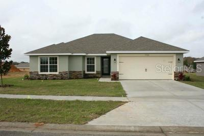 Eustis Single Family Home For Sale: 24418 Calusa Boulevard